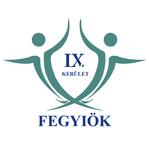 kcss_iv-ifi-feszt-ferencvaros-cikk-kepe